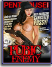 Penthouse Features: Pubic Enemy