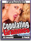 Copulating Grannies 25 Hours 5-Pack