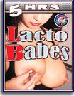 Lacto Babes 5 Hrs