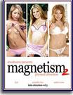 Magnetism 2, Volume 31