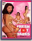 Fresh Hot Babes 16