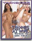 Trannies At Work