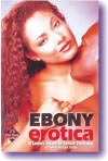 Ebony Erotica A Lover's Guide to Sexual