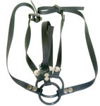 Reversible C-Ring Harness