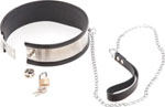 Rapture Steel Band Collar W/Leash - Small