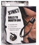 Balls to Mouth Gag