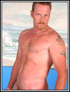 Porn Star Dick Chibbles