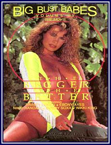 Big Bust Babes 4 Porn DVD