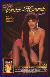 Black Erotic Moments Porn DVD