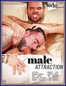 Male Attraction