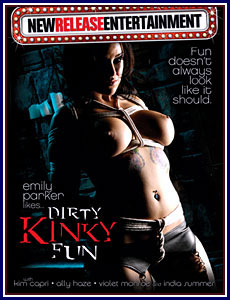 Dirty Kinky Fun Porn DVD