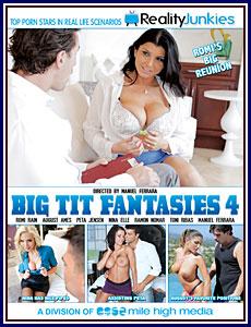 Big Tit Fantasies 4 Porn DVD