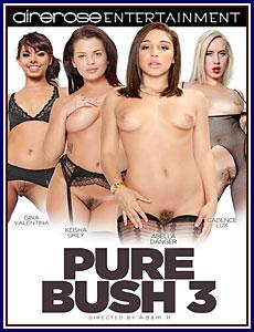 Pure Bush 3 Porn DVD