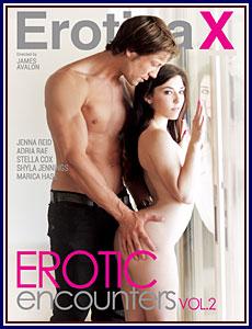 Erotic Encounters 2 Porn DVD