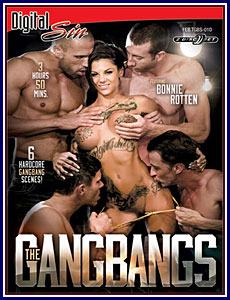 The Gangbangs Porn DVD