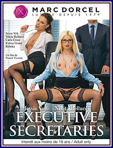 Executive Secretaries Porn DVD
