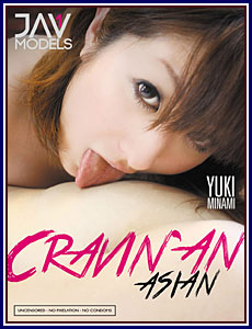 Cravin' An Asian Porn DVD