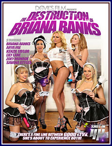 The Destruction of Briana Banks Porn DVD