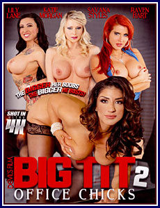 Big Tit Office Chicks 2 Porn DVD