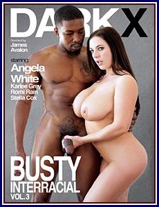 Busty Interracial 3 Porn DVD