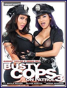 Busty Cops On Patrol 3 Porn DVD