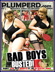 Bad Boys Busted Porn DVD