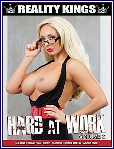 Hard At Work 2 Porn DVD