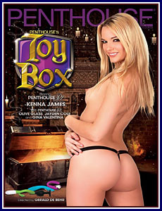 Toy Box Porn DVD