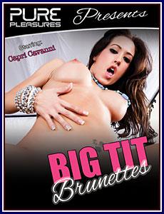 Big Tit Brunettes Porn DVD