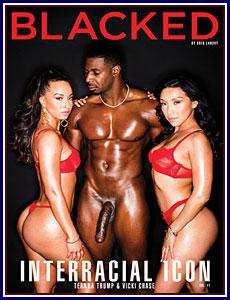 Interracial Icon 11 Porn DVD