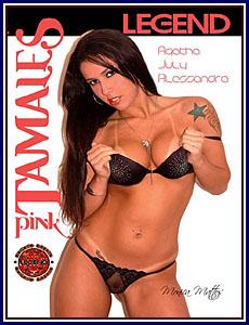 Pink Tamales Porn DVD