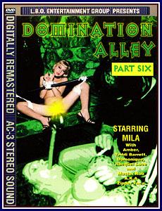 Domination Alley 6 Porn DVD