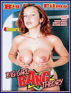 big bang theory porno
