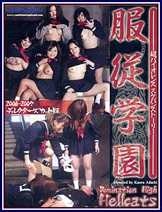 Domination Adult dvd