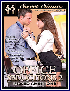 Office Seductions 2 Porn DVD
