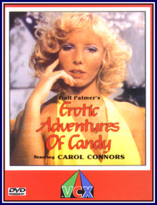Erotic Adventures of Candy Porn DVD