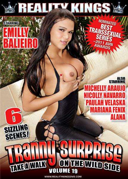 Tranny Surprise 19 (2011)