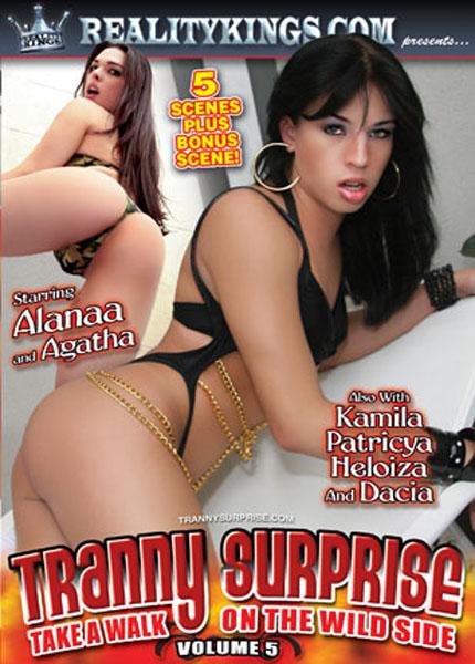 Tranny Surprise 5 (2008) - TS Alana Ribeiro