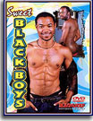 Sweet Black Boys