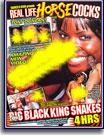 Real Life Horse Cocks Big Black King Snakes