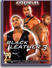 Black Leather 3