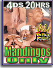 Mandingos Only 20 Hrs 4-Pack