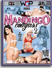 Mandingo's Cougars 2