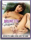 Brunette Vixens 2