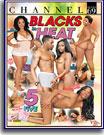 Blacks In Heat 5