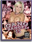 Gang Banged 15
