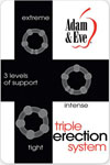 Adam & Eve Triple Erection System - Clear