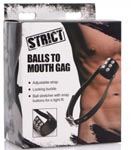 Balls to Mouth Gag